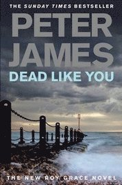 Dead Like You (inbunden)