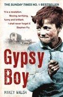 Gypsy Boy (inbunden)