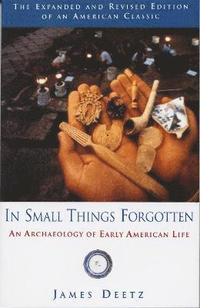 In Small Things Forgotten (h�ftad)