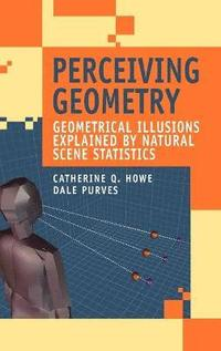Perceiving Geometry (inbunden)