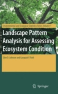 Landscape Pattern Analysis for Assessing Ecosystem Condition (e-bok)