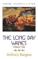 The Long Day Wanes: A Malayan Trilogy (h�ftad)