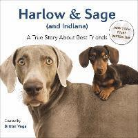 Harlow & Sage (and Indiana): A True Story about Best Friends (inbunden)