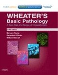 Wheater's Basic Pathology: A Text, Atlas and Review of Histopathology