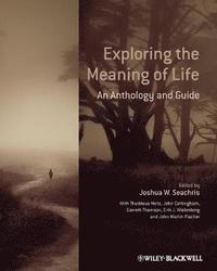 Essay On Meaning of Life