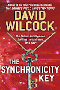 The Synchronicity Key: The Hidden Intelligence Guiding the Universe and You (inbunden)