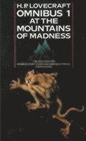 At the Mountains of Madness and Other Novels of Terror: No. 1 At the Mountains of Madness and Other Novels of Terror (inbunden)