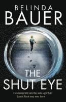 The Shut Eye (e-bok)