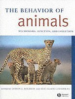 The Behavior of Animals (h�ftad)