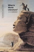 What is World Literature? (h�ftad)