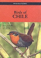 Birds of Chile (pocket)