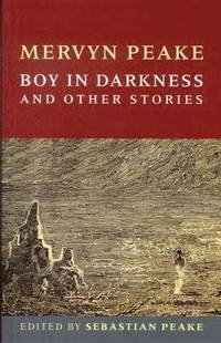 Boy In Darkness (h�ftad)