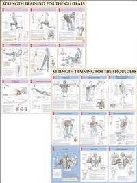 Strength Training Anatomy Charts (h�ftad)
