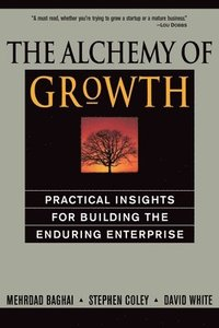 The Alchemy of Growth (e-bok)
