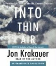 Into Thin Air (h�ftad)
