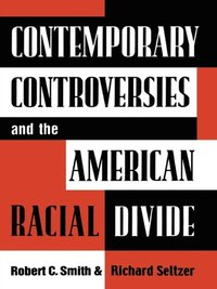 Contemporary Controversies and the American Racial Divide (e-bok)