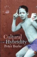 Cultural Hybridity (pocket)