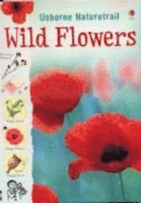 Wild Flowers (häftad)