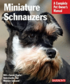 Miniature Schnauzers - Everything About Purchase, Care, Nutrition, and Behavior