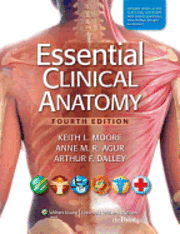 Essential Clinical Anatomy (h�ftad)
