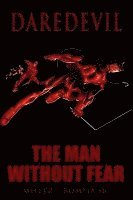 Daredevil: Man without Fear (h�ftad)