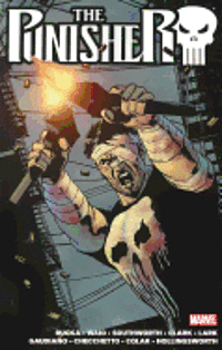 The Punisher: Vol. 2 (h�ftad)