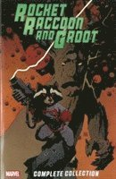 Rocket Raccoon &; Groot: Complete Collection (h�ftad)