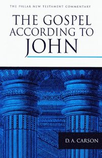 The Gospel According to John (e-bok)
