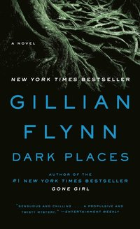 Dark Places (e-bok)