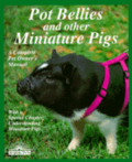 Pot Bellies and Miniature Pigs