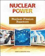 Nuclear Fission Reactors (inbunden)