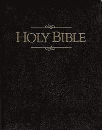 Holy Bible (h�ftad)