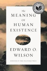 The Meaning of Human Existence (inbunden)