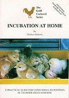 Incubation at Home (h�ftad)