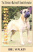 Bullmastiff III: The Ultimate in Bullmastiff Breed Information