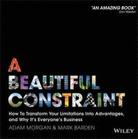 A Beautiful Constraint (e-bok)