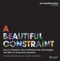 Beautiful Constraint (e-bok)