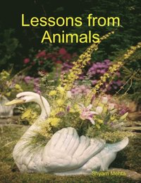 Lessons from Animals (e-bok)
