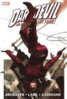 Daredevil By Ed Brubaker &; Michael Lark