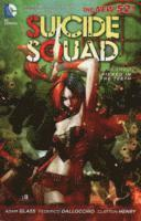 Suicide Squad: Volume 1 Kicked in the Teeth (h�ftad)