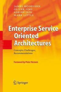 Enterprise Service Oriented Architectures (h�ftad)