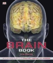The Brain Book (h�ftad)