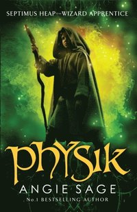 Physik (e-bok)