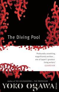 Diving Pool (e-bok)