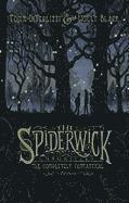 The Spiderwick Chronicles: The Completely Fantastical Edition: The Field Guide; The Seeing Stone; Lucinda's Secret; The Ironwood Tree; The Wrath of Mu (inbunden)