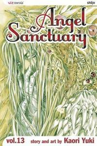 Angel Sanctuary: v. 13 (h�ftad)