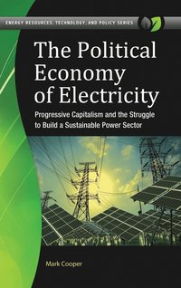The Political Economy of Electricity