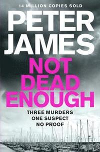 Not Dead Enough (h�ftad)