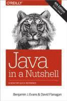 Java in a Nutshell (h�ftad)