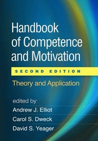 handbook of competence and motivation flow